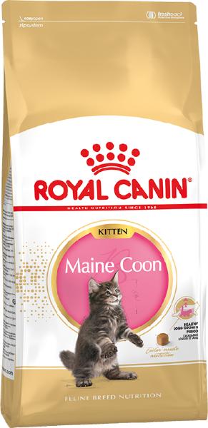 Сухой корм Royal Canin Maine Coon Kitten для котят породы Мейн Кун