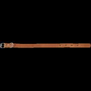 Ошейник для собак Зооник (кожа, подкладка) 20мм