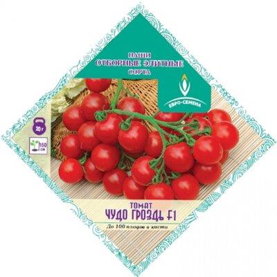 Томат Чудо Гроздь F1 цв/п 15 шт, раннеспелый, плоды черри, красные до 20г