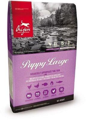 Сухой корм для щенков крупных пород Orijen Puppy Large  85/15 беззерновой