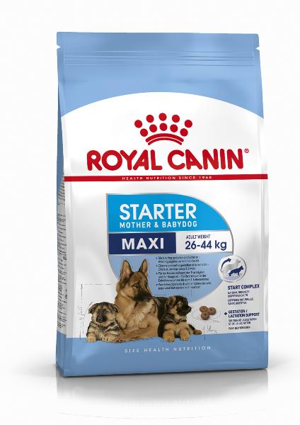 Сухой корм Royal Canin Maxi Starter для щенков до 2 месяцев крупных пород и беременных сук