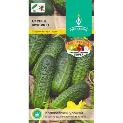 Огурец Шустик F1 цв/п 0,25 гр., партенокарпический, высокоурожайный, НОВИНКА