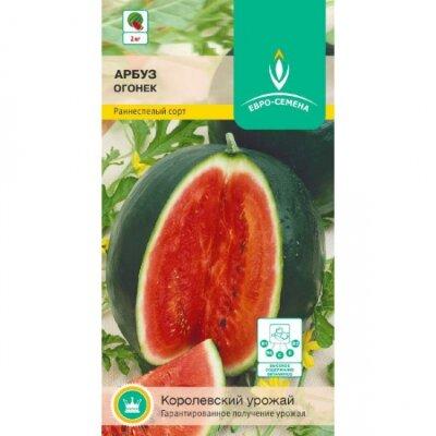 Арбуз Огонек цв/п 12 шт., раннеспелый, плоды округлые, до 2 кг, мякоть оранжево-красная, сахарная
