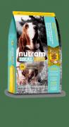 Натуральный сухой корм для собак Nutram Ideal Holistic I18, контроль веса, 13.6кг