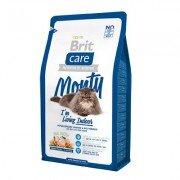 Гипоаллергенный сухой корм Brit Care Cat Monty Indoor для кошек живущих в квартире