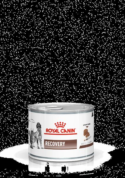 Консервы Royal Canin Recovery для кошек и собак в период выздоровления, 195 г