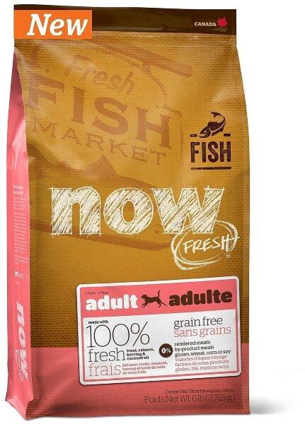 Сухой корм NOW Fresh Adult для взрослых собак с чувствительным пищеварением беззерновой с форелью и лососем